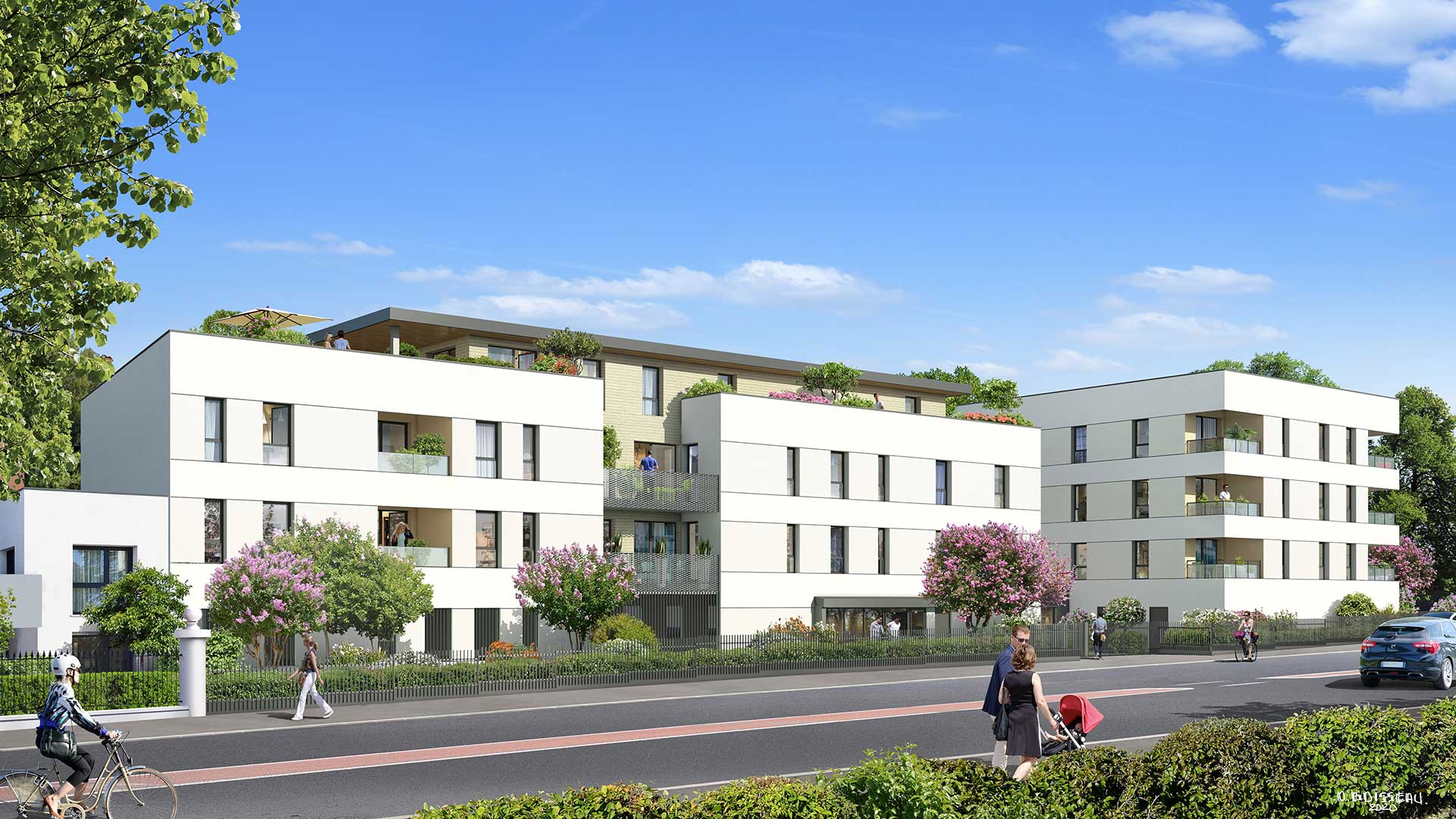 Programme immobilier neuf Arborescence